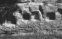 Il parco archeleogico  - Siracusa (2778 clic)