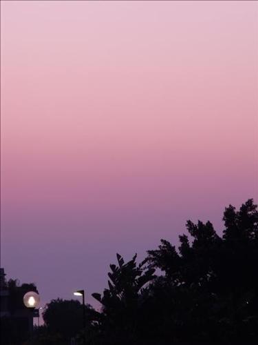 Il rosa del mattino - CATANIA - inserita il 09-Jan-12