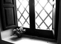 Eremo di Santa Rosalia - finestra   - Santo stefano quisquina (1741 clic)