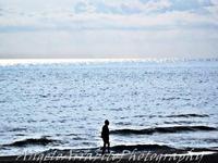 spiaggia cava d'aliga (3115 clic)
