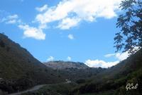 Panorama dalla SS 121   - Assoro (1645 clic)
