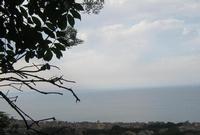 Dalla Grotta S. Teodoro   - Acquedolci (3137 clic)