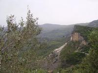 Valle del Rosmarino e Monti Nebrodi   - Militello rosmarino (2718 clic)