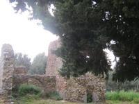 Rudere a S. Teodoro   - Acquedolci (3798 clic)