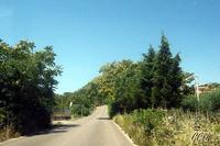 Purtedda o Casali (Porta di Nissoria) - Strada SS 121 per Leonforte (1980 clic)