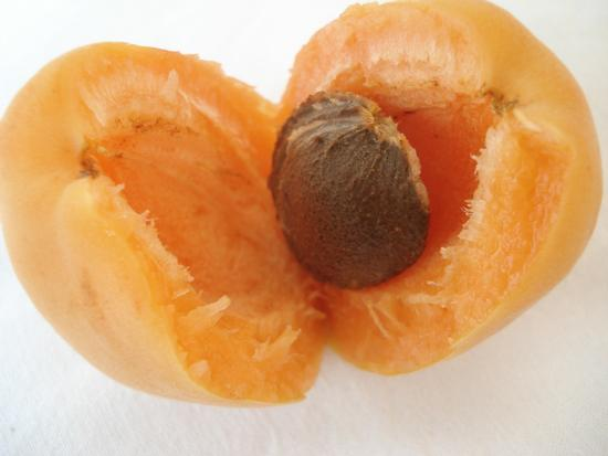 frutta di stagione - ASSORO - inserita il 09-Jul-12