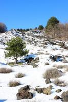 Neve e sciara   - Etna (990 clic)
