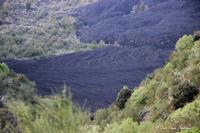 Fronte lavico valle del bove (1062 clic)