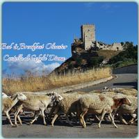 Il castello di Cefala' Diana  - Bolognetta (3394 clic)