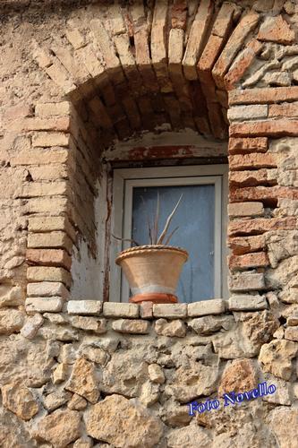 Finestra con vaso. - LEONFORTE - inserita il 18-Apr-14
