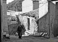 Momenti di vita Siciliana.   - Leonforte (2582 clic)