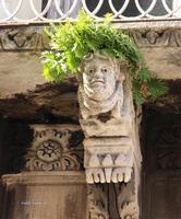 Anche le pietre hanno i capelli. Un curioso sotto balcone che si trova a Catania, dove in maniera del tutto naturale vi si è formata una chioma di felce.  - Catania (1851 clic)