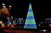 Sicilia Outlet Village: Intorno all'Albero di Natale 2012   - Agira (3166 clic)