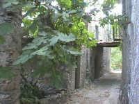 Novara di Sicilia - frazione vallancazza - via Bertani ( quartiere semi abbandonato )  - Novara di sicilia (3912 clic)