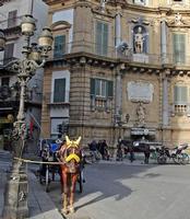 In attesa del turista  PALERMO Fustaneo Stefano