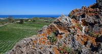 Resti di una antica villa greca     - Cerda (2282 clic)