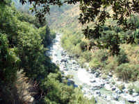 fiume alcantara  - Alcantara (2578 clic)