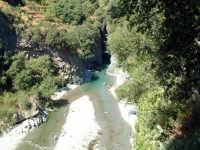 fiume alcantara, gole  - Alcantara (2515 clic)