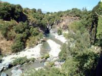 fiume alcantara  - Alcantara (2478 clic)