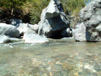fiume alcantara  - Alcantara (2109 clic)
