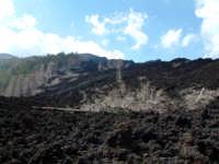 quota 1800m, eruzione 2002  - Etna (3398 clic)