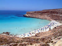 la spiaggia dell'isola dei conigli  - Lampedusa (38009 clic)