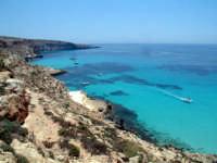 dai conigli alla tabaccara  - Lampedusa (6425 clic)