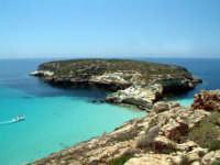 l'isola dei conigli  - Lampedusa (60306 clic)