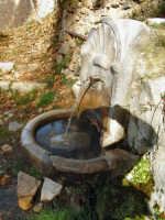 fontana alla pineta  - Petralia sottana (4612 clic)