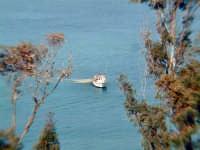 barche in pesca nel mare di Cefalù  - Cefalù (4681 clic)
