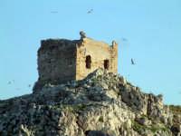 torre dell'isolotto  - Isola delle femmine (8204 clic)