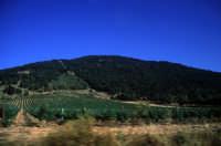 Veduta della Montagna Grande  - Fulgatore (4355 clic)