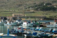 Il porto  - Favignana (5156 clic)