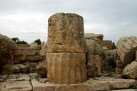 Particolare del parco archeologico di Selinunte  - Selinunte (2918 clic)