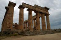 Il Tempio nel parco archeologico  - Selinunte (3224 clic)