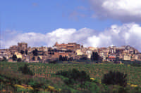 Veduta di Partanna  - Partanna (4376 clic)
