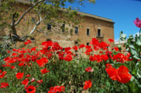 Il Convento delle Benedettine  - Partanna (4403 clic)