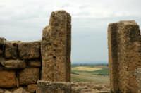 Veduta dell'Acropoli di Selinunte   - Selinunte (2943 clic)