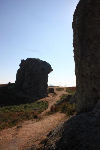 Montalbano Elicona (ME) Megaliti di Argimusco -  - inserita il 19-Mar-19