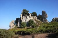 Montalbano Elicona (ME)  I megaliti di Argimusco (352 clic)