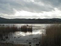 lago di pergusa   - Enna (1447 clic)
