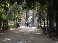 giardino    - Palermo (1619 clic)