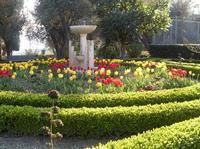 Giardino in fiore  giardino con fontana  - Taormina (2048 clic)