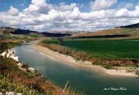 Il fiume Salso nelle vicinaze di Riesi (2565 clic)