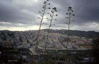 Riesi vista dal monte Veronica (1528 clic)
