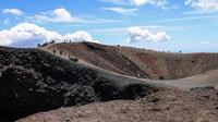 Crateri silvestri   - Etna (2102 clic)