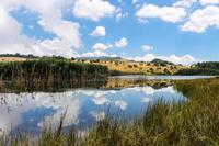 Lago Biviere   - Nebrodi (2192 clic)