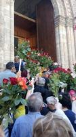 Rose di Santa Rita  Palermo MARCO GIUSEPPE DE GAETANO
