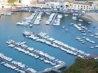 Veduta del porto   - Castellammare del golfo (759 clic)