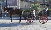 Carrozza frega turisti Bella da vedersi.... ma ..... turisti spennati per pochi chilometri..... Spec